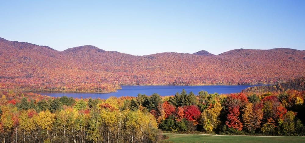 Fall Foliage Report!