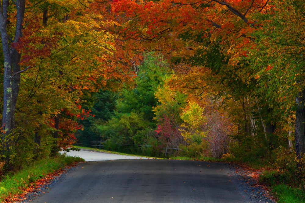 5 Must-do Biking Spots Near The Vermont Inn This Fall