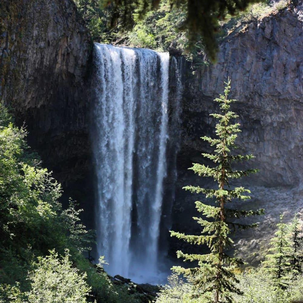 6 Wonderful Hikes Near Mt Hood