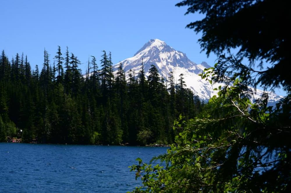 6 Wonderful Hikes near Mt Hood