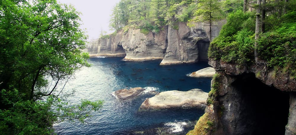Day 3: Neah Bay and Cape Flattery (two hours from Sea Cliff Gardens)