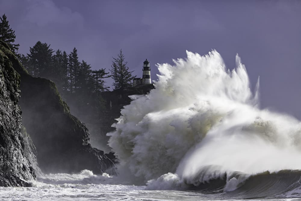 Perfect shot: Peninsula pros offer photo tips