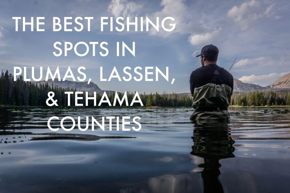 The Best Fishing Spots in Plumas, Lassen, & Tehama Counties