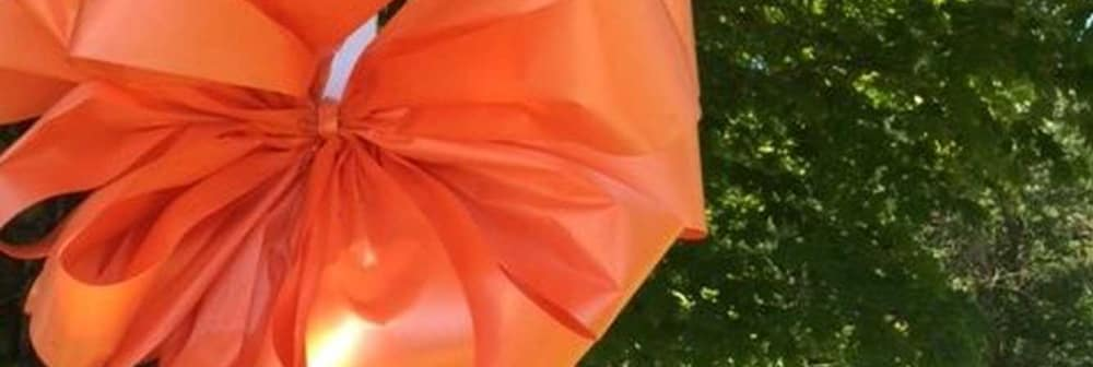 What's the Orange Ribbon For?