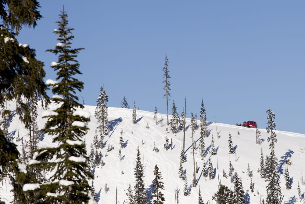 3 Amazing Guided Winter Tours In Whitefish