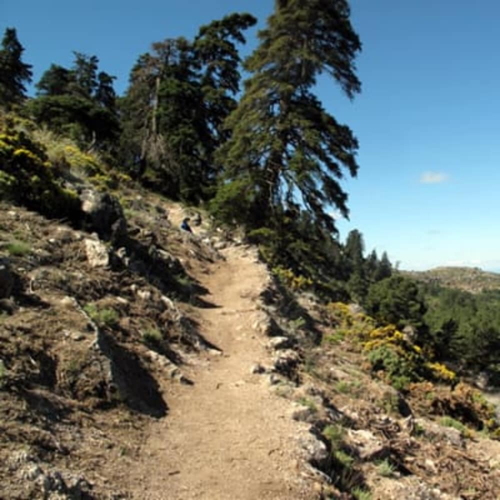 Extreme Mountain Biking