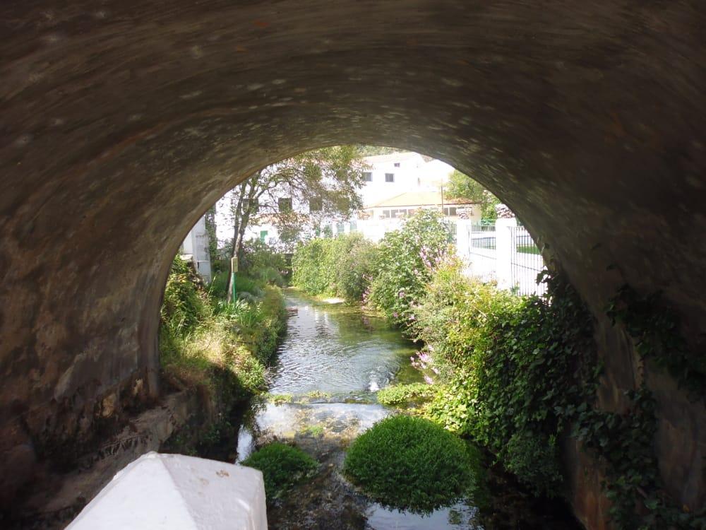 Where to eat in the Serrania de Ronda