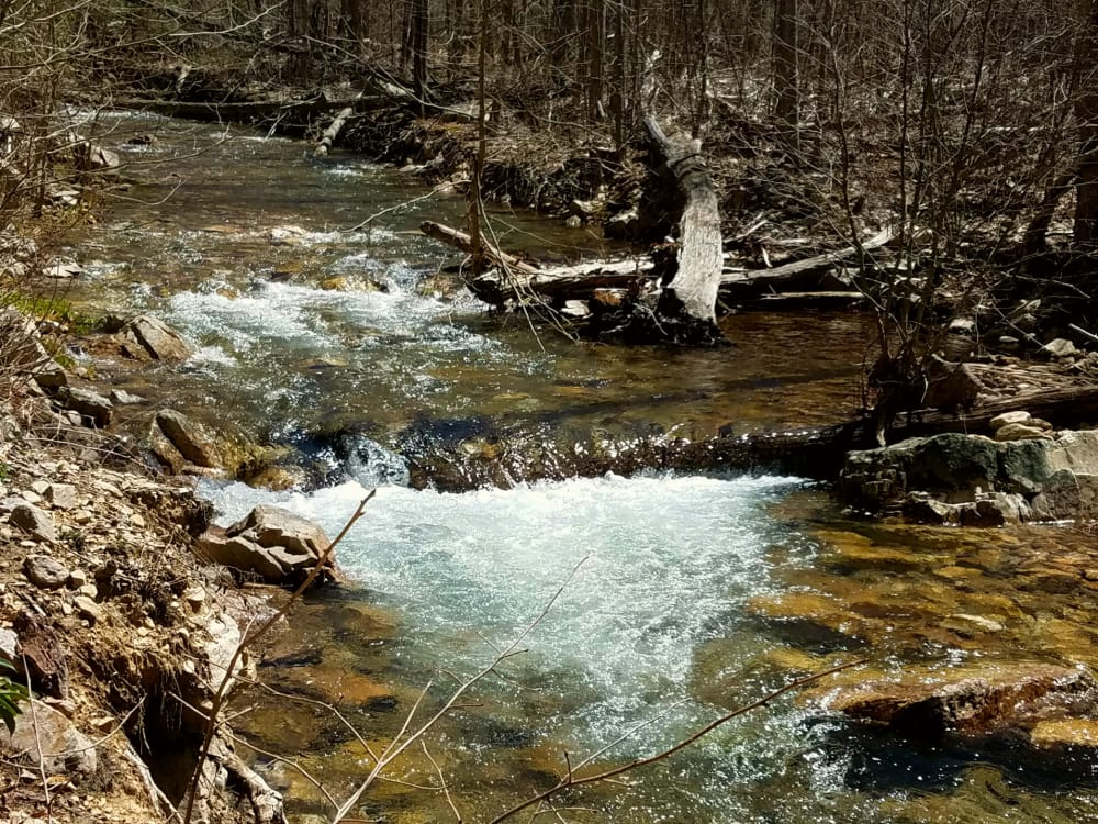 A Peak Into the Wilderness: St. Mary's Wilderness Began in Mining, Ended in Hiking