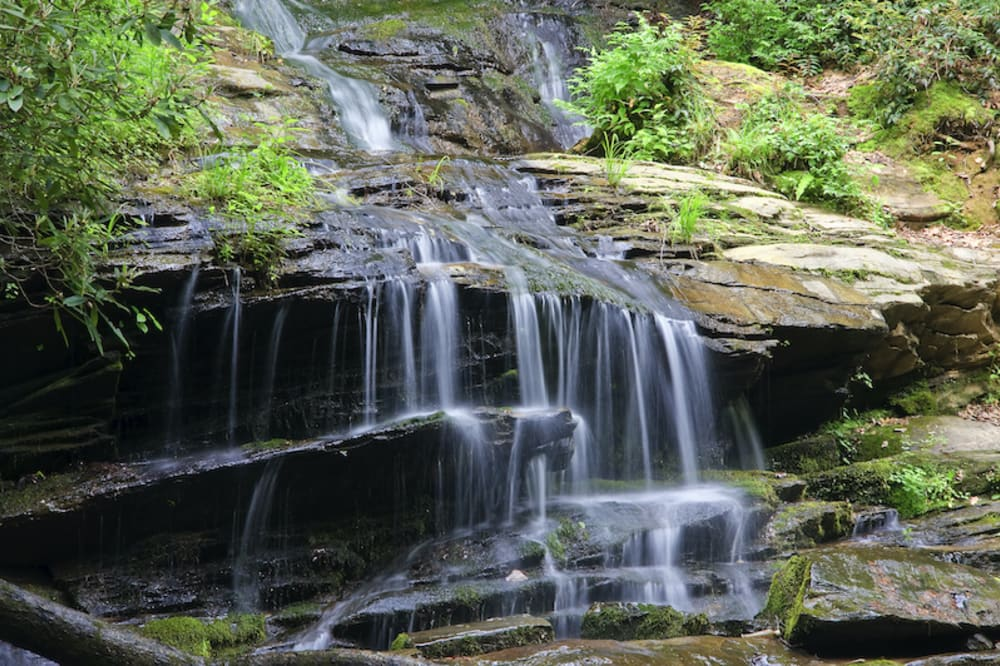 The 10 Best Waterfall Hikes Around Asheville