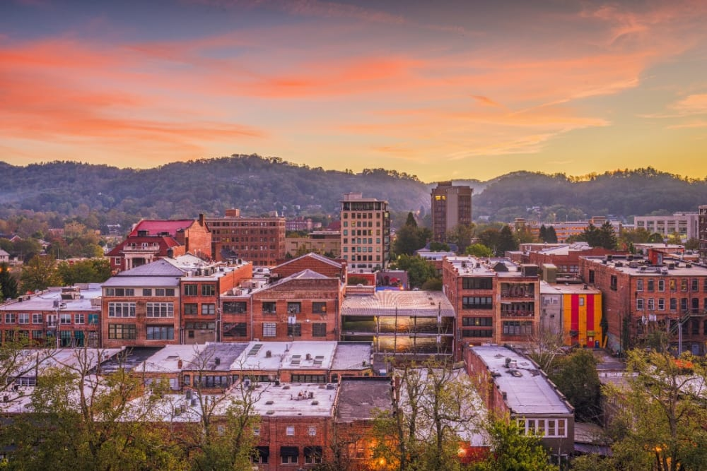 36 Hours in Asheville, NC - Pandemic Edition