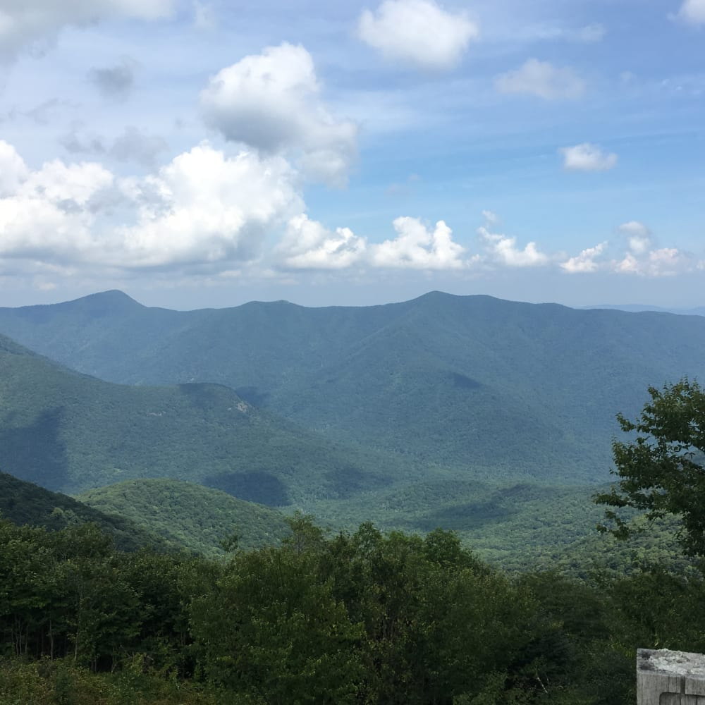 Take a Drive to Mount Mitchell!