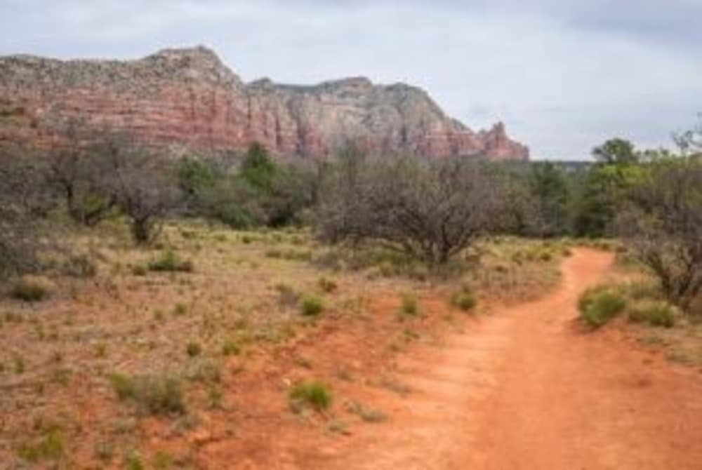 Hit the Trails and Hike the Sights of Arizona
