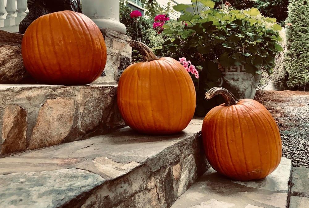 October Festivities!