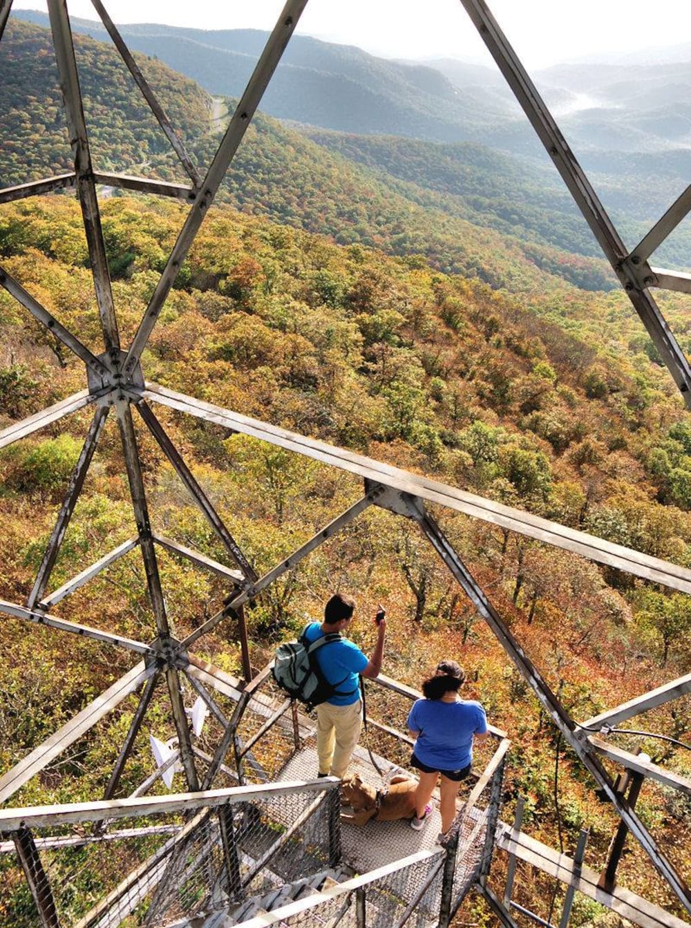 15 Quick Hikes along the Blue Ridge Parkway