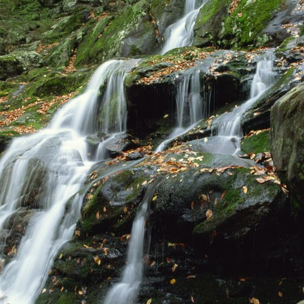 Ooh ... Take a Hike ... to a Spring Waterfall!