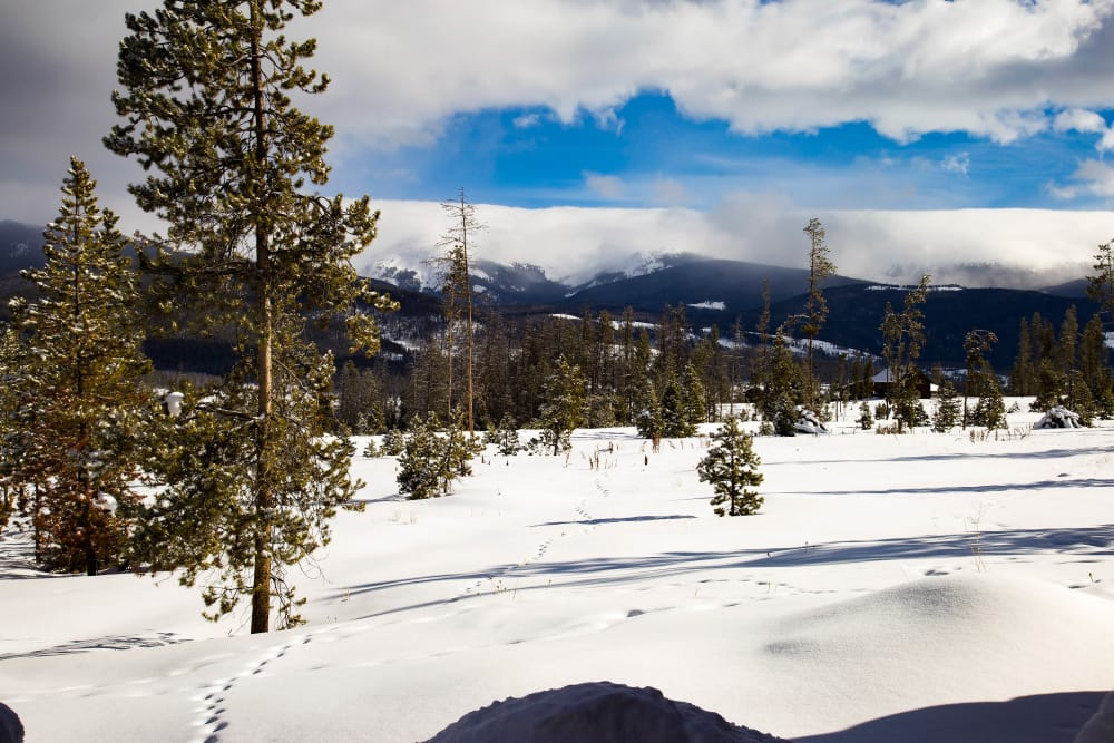 5 Awesome Things To Do In the Winter Park/Fraser Valley