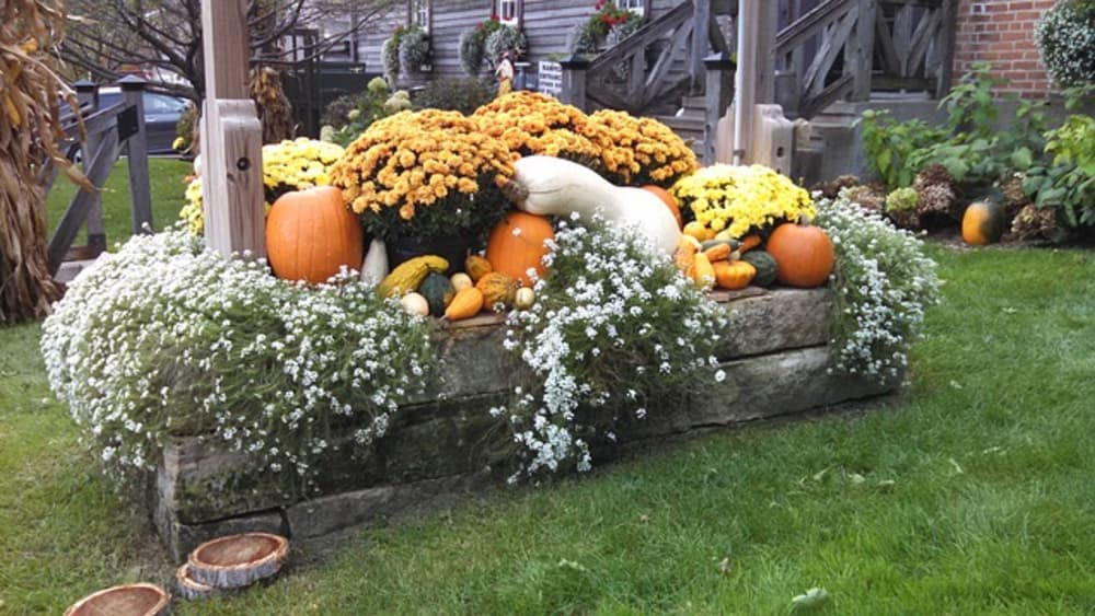 7 Things to Take in  October in Lancaster County