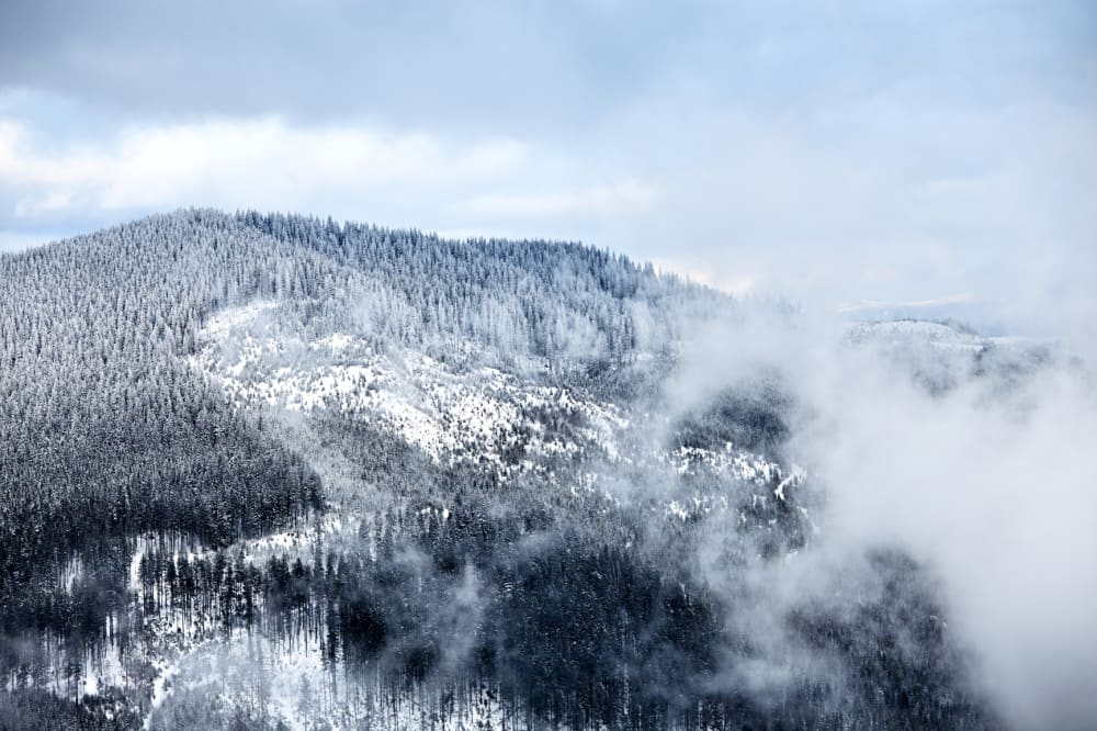 Top 5 Winter Things To Do in Waynesville, NC