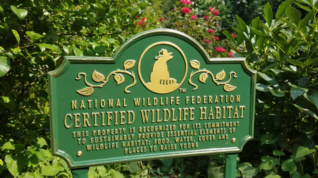 Our Certified Wildlife Garden