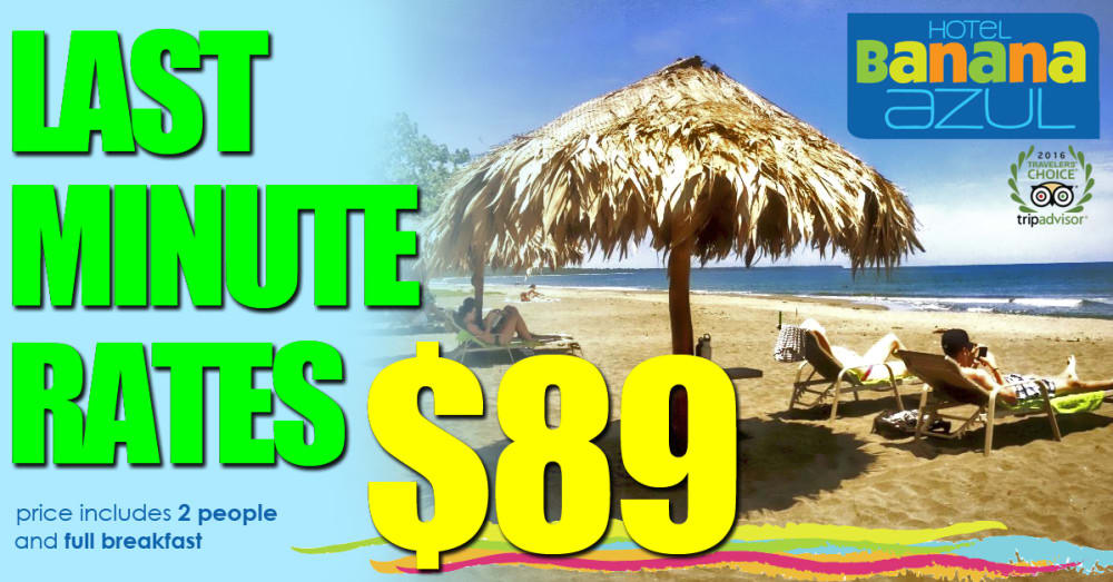 Last Minute Rates from $89