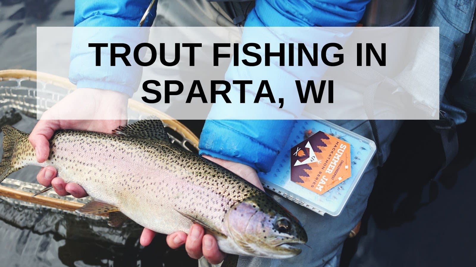 Trout Fishing in Sparta, WI