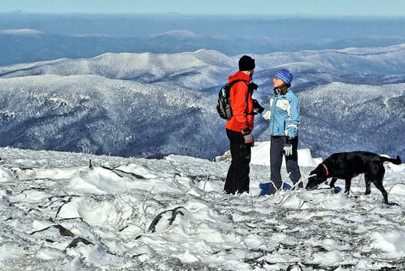 Things to do in Asheville in Winter