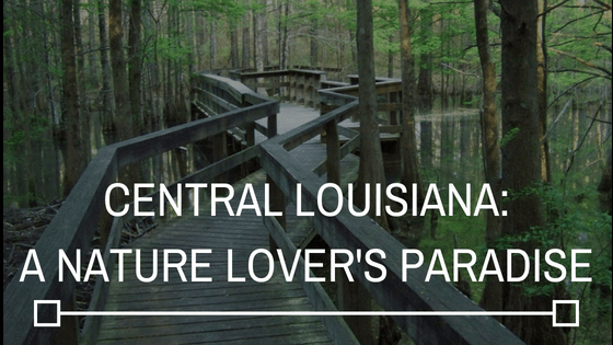 Central Louisiana: A Nature Lover's Paradise