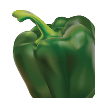 What To Do With The Last Green Pepper - a Recipe