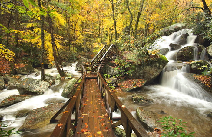 Autumn Colors In Vilas Park Lagoon >> Fall Foliage Forecast For Western North Carolina Mountains 2018